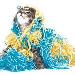 Wie oft was impfen? #1 Katze